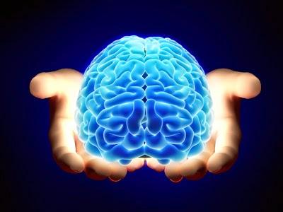 fisioterapia a domicilio neurologia elche